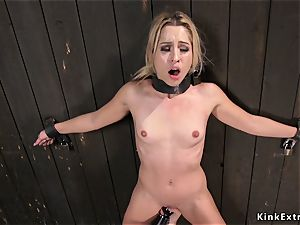 slim marvelous blondie shackled to the wall